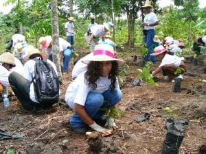 2005年ブラジルベレン植樹祭